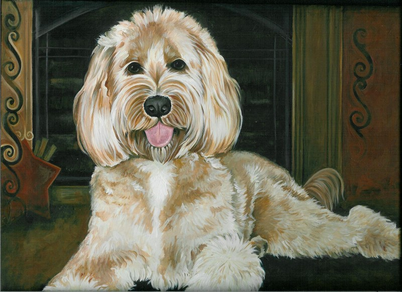 Sunny Dae Goldendoodles
